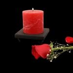 red_rustique_rose